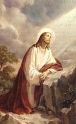 Agonia di Gesù nell'Orto degli Ulivi - Tempo di preghiera
