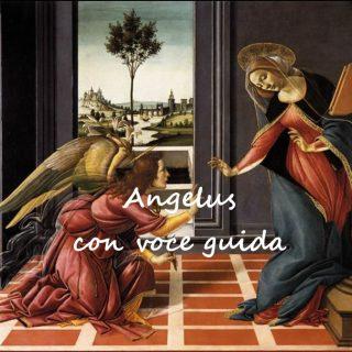 Angelus con audio mp3 - Tempo di preghiera